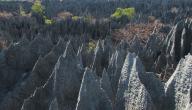 تعريف العصور الجيولوجية