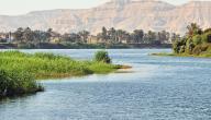 موضوع عن نهر النيل وأهميته