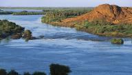 موضوع عن واجبنا نحو نهر النيل