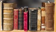 نشأة النظرية الأدبية