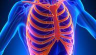 علاج التهاب عظام القفص الصدري