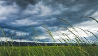 كيف تنشأ الرياح
