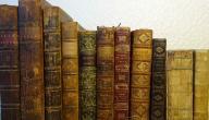 شرح نظرية الانعكاس في الأدب