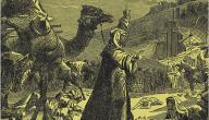 متى كان الفتح الإسلامي لمصر