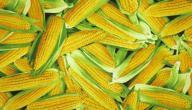 السعرات الحرارية في الذرة