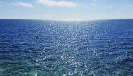 نص وصفي عن البحر