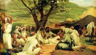 أصل العرب المستعربة