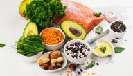 ما الفرق بين البروتين النباتي والبروتين الحيواني