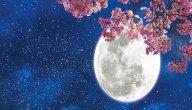 موضوع عن القمر للصف الرابع