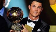 أفضل لاعب في العالم لعام 2013