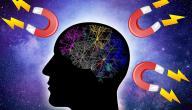 ما هو قانون الجذب الكوني