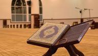 آيات قرآنية عن الرزق