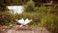 آيات المحبة في القرآن الكريم