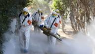هل فيروس كورونا مميت