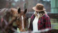 كيفية تسمين الخيول وزيادة قوتها