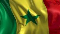علم السنغال: ألوانه ومعانيها، وسبب اختيار هذا الشكل له