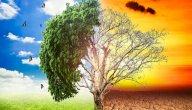 علاقة الغذاء بظاهرة الاحتباس الحراري