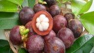 كيفية زراعة فاكهة المانجوستين