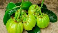 فاكهة الجارسينيا: الفوائد والأضرار