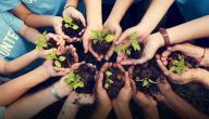 تأثير العمل التطوعي على الصحة النفسية