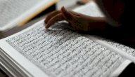 معنى آية: ثاني عطفه ليضل عن سبيل الله، بالشرح التفصيلي