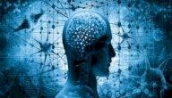 الذاكرة الصريحة والضمنية