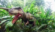 أنواع الكائنات الحية التي عاشت عصور الديناصورات، وهل بقي منها لليوم؟