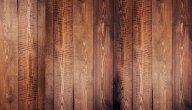 أفضل أنواع الخشب للأبواب: الأطول عمرًا والأجود والأنسب