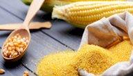 فوائد دقيق الذرة للرجيم