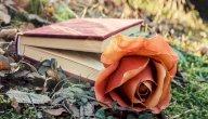 بين الألم والأمل: أجمل قصائد نازك الملائكة