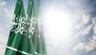 نبذة عن مشهور بن عبد العزيز آل سعود وأسرته وأشقائه