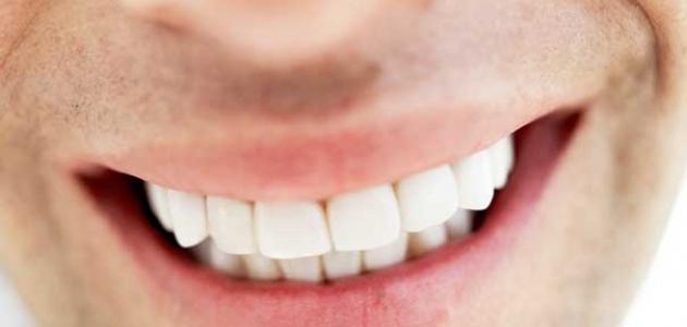 معلومات عن تركيب الأسنان