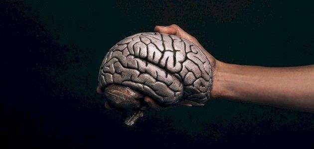 السكر مضر بعمل الدماغ