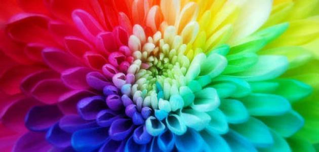 ألوان مناسبة لفصل الربيع (للسيدات)
