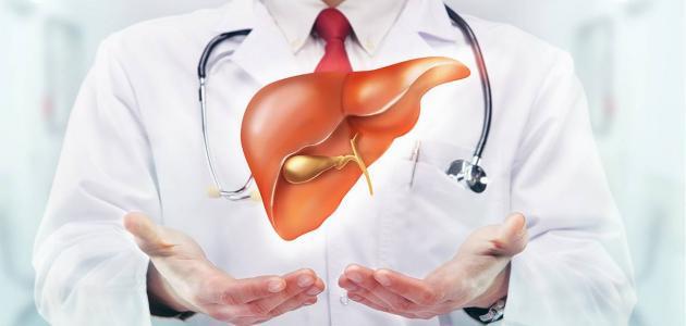 طرق تعزيز عمل الكبد