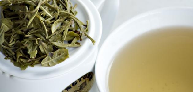 فوائد الشاي الأبيض