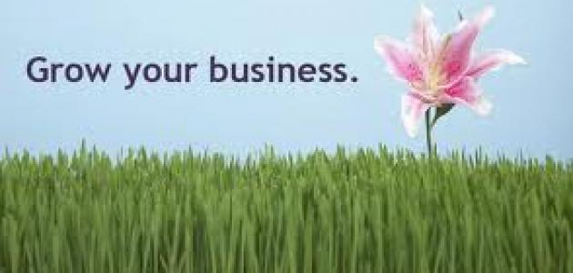 نصائح لتطوير الشركات