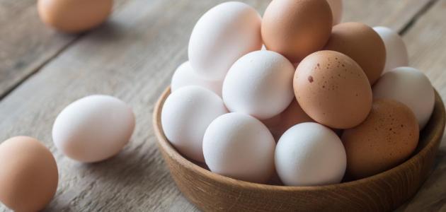 أعراض وأسباب حساسية البيض لدى الأطفال