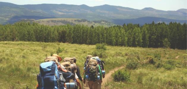 المشي لمسافات طويلة في الطبيعة يمكن أن يغير أدمغتنا