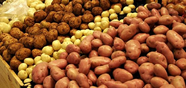 ما هو الفرق بين البطاطا و البطاطس