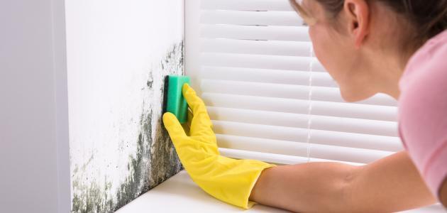 طريقة التخلص من الرطوبة على الجدران