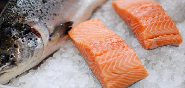 فوائد-سمك-السلمون/