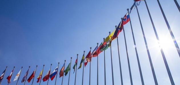 ما هي المنظمة العالمية للملكية الفكرية