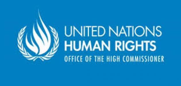 ما هي مفوضية الأمم المتحدة السامية لحقوق الإنسان؟