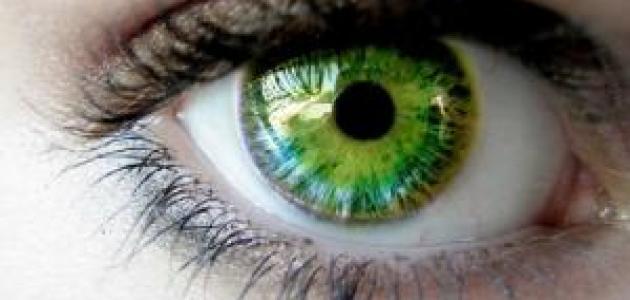 تحليل الشخصية من خلال لون العين