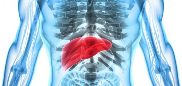 أعراض-وأسباب-تضخم-الكبد/