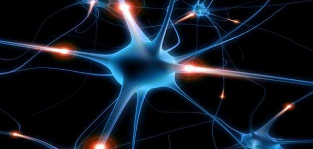مشاكل الجهاز العصبي: أسبابها و علاجها