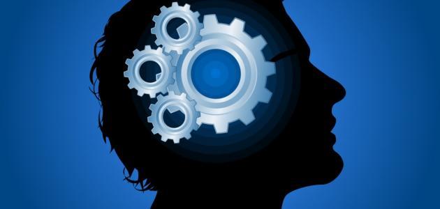 أعمال بسيطة ترفع نسبة الذكاء