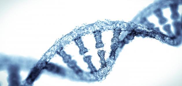 استخدامات البصمة الوراثية
