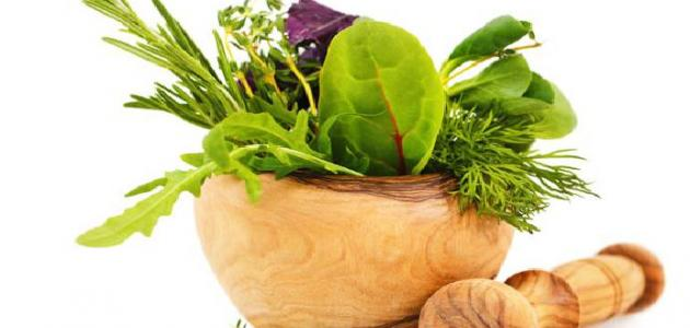 علاج الكلى بالأعشاب: حقيقة أم خرافة قد تضرك؟